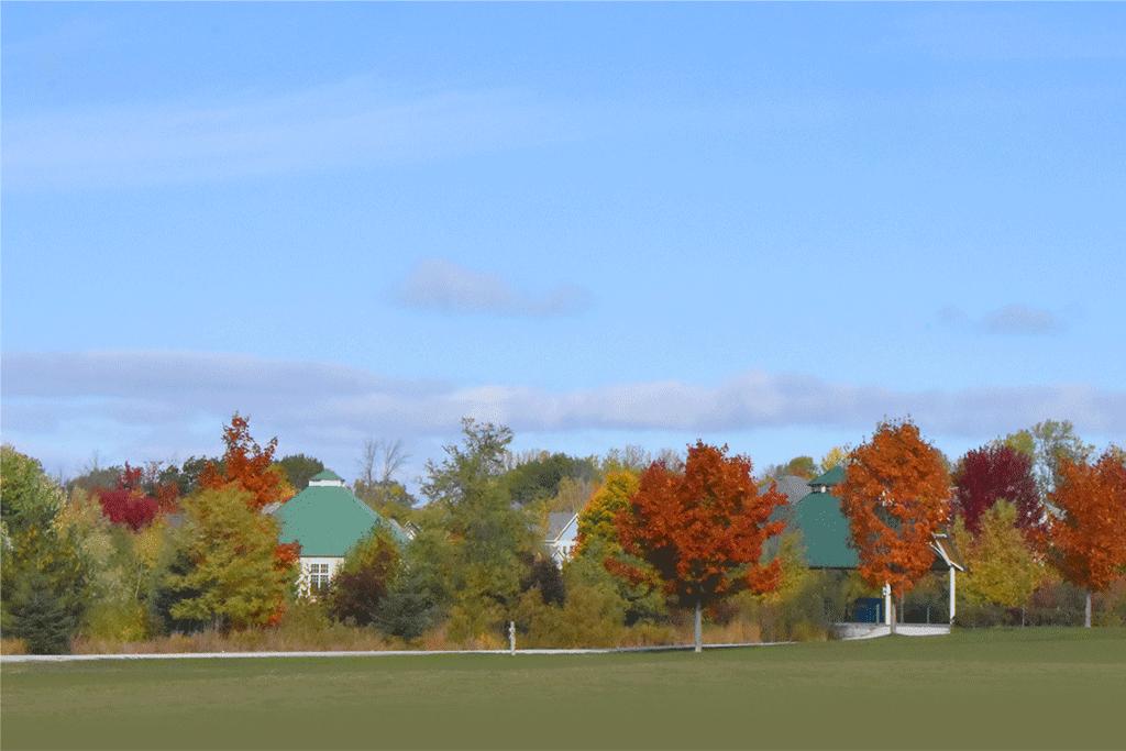 Fall at Stonebridge
