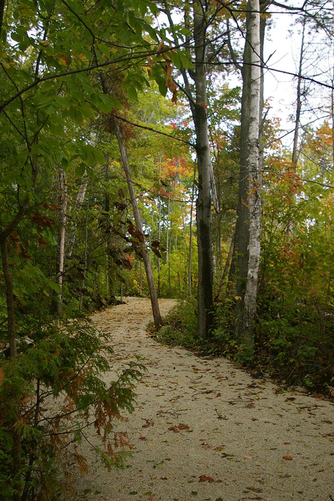 Stonebridge Winding Sandy Trail