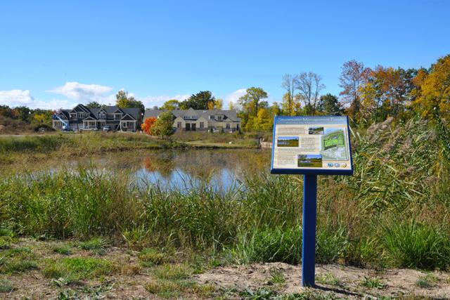 Trail to Stonebridge Pond